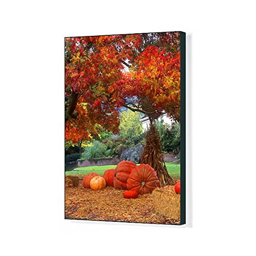 Media Storehouse 20x16 Canvas Print of Halloween Decorations of Pumkins and Corn stalks in Front of a Home (12626787) -