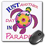 Best 3dRose Turtle Beach Mouse Pads - 3dRose Macdonald Creative Studios – Islands - Just Review