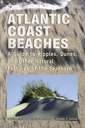 Atlantic Coast Beaches: A Guide to Ripples, Dunes, and Other Natural Features of the Seashore (Fl Beach Atlantic)