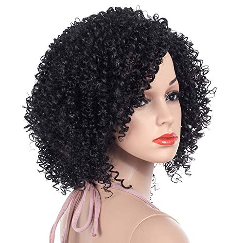 - Lady night 1b Black Afro Curly Wigs for Women Side Part Synthetic Short Hair Wig Full Heat Resistant America Natural Hair,#1B,12inches