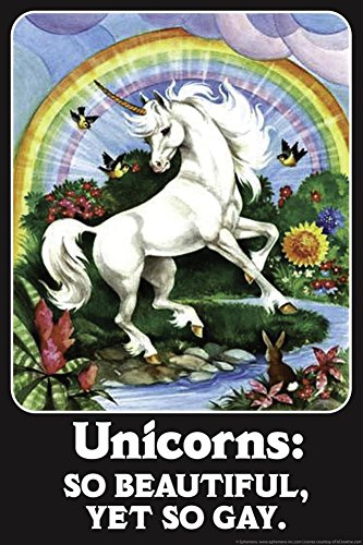 Unicorns: So Beautiful, Yet So Gay - Funny Poster