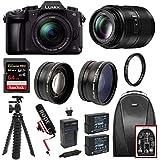 PANASONIC LUMIX G85 4K Mirrorless 2 lens kit (12-60mm, 45-200mm lenses) w/64GB Extreme Pro Bundle