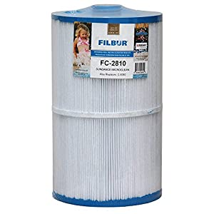 Filbur FC-2810 Antimicrobial Replacement Filter Cartridge for Sundance Micro Clean Pool and Spa Filter