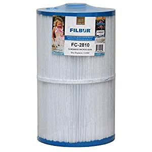 Filbur FC-2810 Antimicrobial Replacement Filter Cartridge for Sundance Micro Clean Pool & Spa Filter