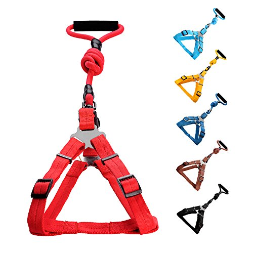 Vicform Dog Harness & Leash Set: Heavy Duty Poly/Nylon Straps/ Anti-Twist Leash on Spin Clasp- Durable Braid Leash / Comfort Foam Handle/ Bright Colors,Small,Red