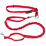 Pawaboo Hands Free Dog Leash, Premium Reflective Dog Leash for Running, Walking, Hiking and Jogging, Adjustable Retractable Waist Belt, Dual-Handle Shock Absorbing Bungee Leash, Large Size, RED