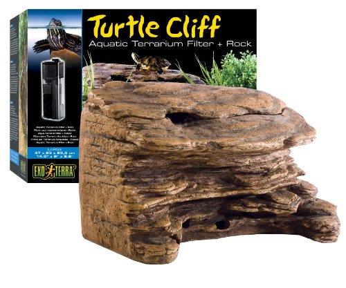 Turtles Rock - 7