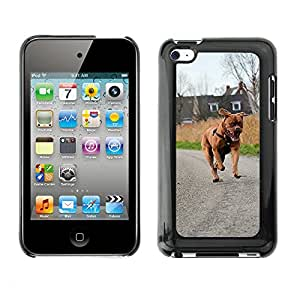 GoGoMobile Slim Protector Hard Shell Cover Case // M00118566 Bordeaux Dog Happy Puppy Canine Dog // Apple ipod Touch 4 4G 4th