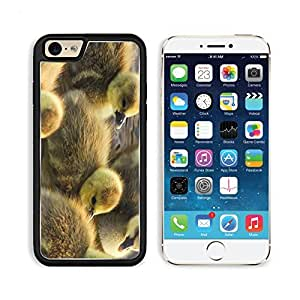 Ducklings Calves Float Color Birds Apple iPhone 6 TPU Snap Cover Premium Aluminium Design Back Plate Case Customized Made to Order Support Ready Liil iPhone_6 Professional Case Touch Accessories Graphic Covers Designed Model Sleeve HD Template Wallpaper Photo Jacket Wifi Luxury Protector Wireless Cellphone Cell Phone