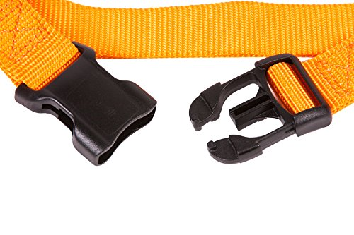Image of GoGo Pet Products GoGo 3/8-Inch Martingale Dog Collar, X-Small, Orange