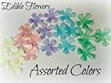 24 ASSORTED RAINBOW COLOR Flowers Edible Wafer Paper Flower 1.5