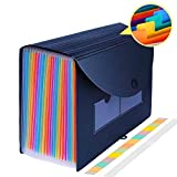Accordian File Organizer,24 Pockets Expanding File Folder,Portable A4 Letter Size File Box,Standing Paper Receipt Document Organizer,Accordion File Folder Plastic File Storage Box with 2 Labels