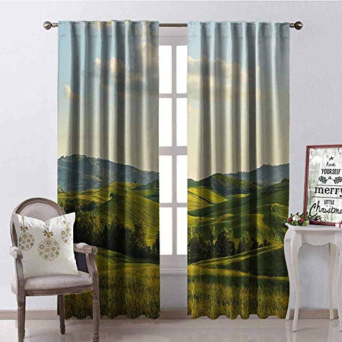 Gloria Johnson Country Wear-Resistant Color Curtain Tuscany Hills Italy Meadow Greenery Pastoral Rural Scenery Farmland Scenic Waterproof Fabric W52 x L63 Inch Green Pale Blue
