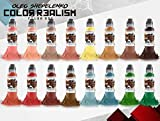 Oleg Shepelenko Realism Color 16 Bottle Set - World Famous Tattoo Ink - 1oz