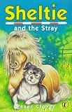 Sheltie 12: Sheltie and the Stray