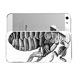 Covered Case for iPhone 5/5S Animals A Flea From Microscope Observation