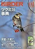 BIRDER(バーダー)2020年1月号 ツグミ類 事典【特別付録 BIRDER DIARY 2020】