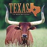 Texas 2020 Mini Calendar
