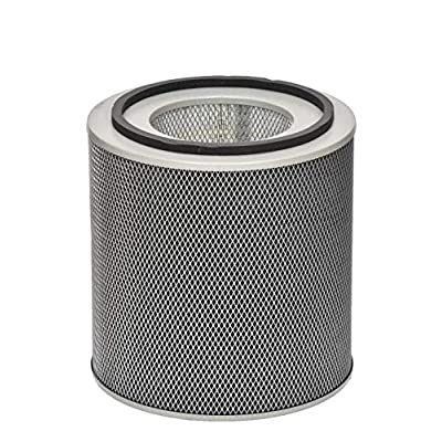 Austin Air FR450A Healthmate Plus Standard Replacement Filter, Black: Industrial & Scientific