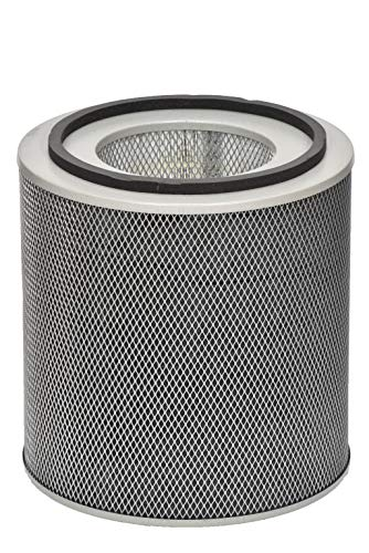 Air Healthmate Austin Replacement Filter - Austin Air FR400B Healthmate Standard Replacement Filter, White