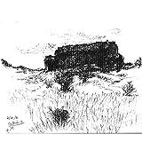 In Cortuida (a landscape drawing set in Spain)
