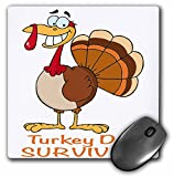 Dooni Designs More Random Cartoon Designs - Funny Turkey Day Survivor Turkey - MousePad (mp_118711_1)