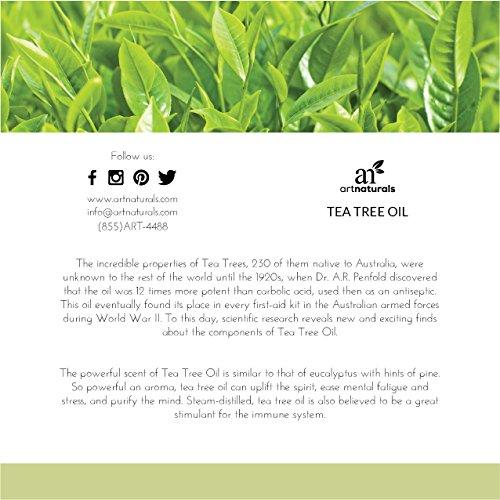 ArtNaturals 100% Pure Tea Tree Essential Oil - (4 Fl Oz/120ml) - Natural Premium Melaleuca Therapeutic Grade - Great with Soap and Shampoo, Face and Body Wash - Treatment for Acne, Lice by ArtNaturals (Image #2)