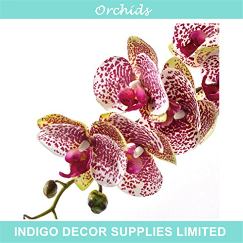 - Phalaenopsis Orchid Silk Real Touch Artificial Flower Wedding Flower Orchid Floral Christmas Party 1 stem coffee 1 stem leaf