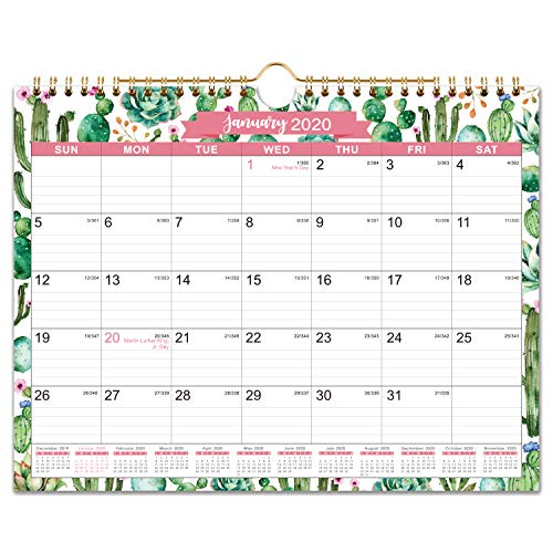 """2020-2021 Calendar - 18 Monthly Wall Calendar, 11"""" x 8.5"""", Jan. 2020 - Jun. 2021, Two-Wire Binding, Ruled Blocks with Julian Dates, Perfect for Planning and Organizing for Home or Office"""