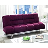 Furniture of America Amanda Futon Sofa