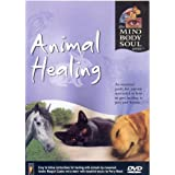 Animal Healing