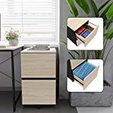 Bestier 2 Drawer File Cabinet with 20 Free File