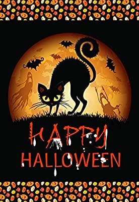 amazon com lantern hill halloween garden flag black cat true