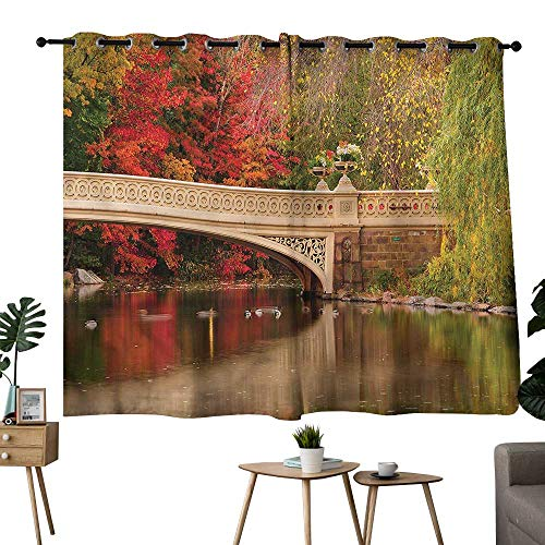 Diycon Bedroom Balcony Living Room Curtain NYC Bow Bridge in Autumn Season Breathability W55 xL72 Suitable for Bedroom Living Room Study,etc (With Nyc Balcony Hotel)