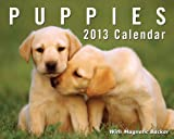 Puppies 2013 Mini Day-to-Day Calendar, Andrews McMeel Publishing Staff, 1449416586