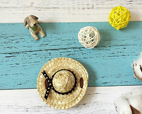Black XS Black XS LIUSHUANG Animal Sombrero Hawaii Pet Straw Hat,Handcrafted Woven Straw Pet Hat with Adjustable String for Pet Dog Cat (XS, Black)