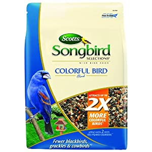Songbird Selections Colorful Bird Seed Blend 55