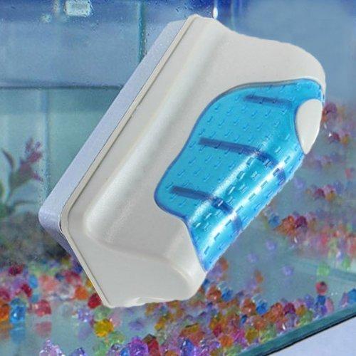 Review Jasonwell Magnetic Aquarium Fish