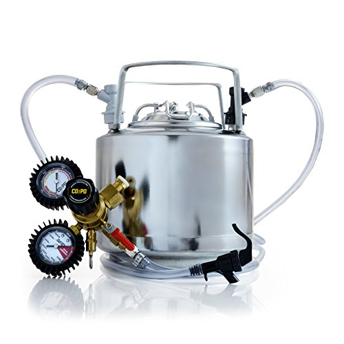 Draft Brewer Cannonball Stainless Steel 1.75 Gallon Mini Keg System