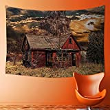 L-QN Tapestry Wall Hanging Mysterious Tapestry Scary Horror Movie Themed Abandoned House in Pale Grass Garden Sunset Photo Multicolor Tapestry Art for Home Decor