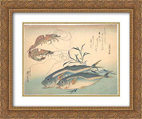 Utagawa Hiroshige - 36x28 Gold Ornate Frame and Double Matted Museum Art Print - Aji Fish and Kuruma-EBI, from The Series Uozukushi (Every Variety of Fish)