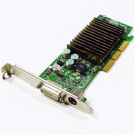 Amazon.com: 64MB Dell nVIDIA GeForce4 MX440 AGP 8x DDR DVI TV-out G0169.:  Computers & Accessories