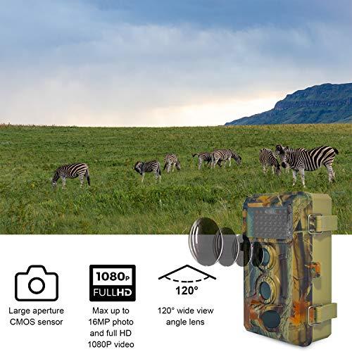 Buy trail camera pics