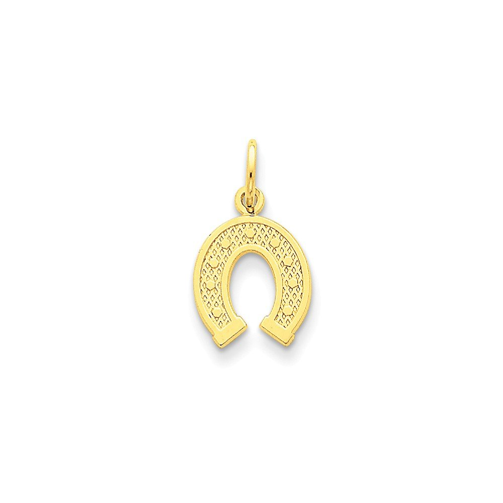 K/&C 14k Yellow Gold Horseshoe Charm on a 14K Yellow Gold Carded Rope Chain Necklace