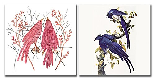 Animals Canvas Prints Wall Art Magpie Pictures Birds Flowers Paintings Abstract Artworks for Living Room Bedroom Office Decoration, 12x12 inch, 2 pieces Framed by A Cup of Tea