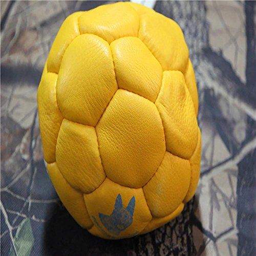 Myyxt Pets Dog Ball Toys Puppy Chew Training Food Container Balls Made of Leather , B by Pet