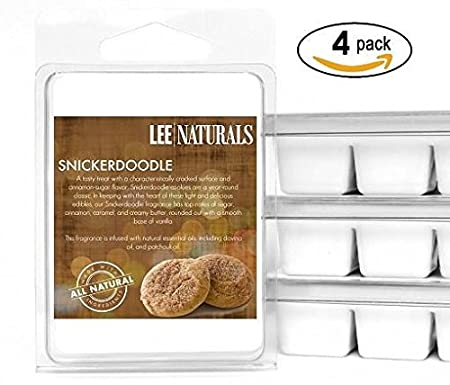 Lee Naturals Winter & Holiday - (2 Pack) CANDY CANE Premium All Natural 6-Piece Soy Wax Melts. Hand Poured Naturally Strong Scented Soy Wax Cubes