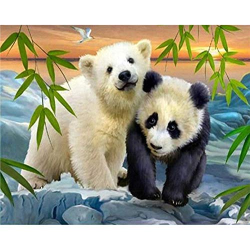- [Wood Framed] Paint By Numbers Kit With Brushes And Acrylic,Bear And Panda
