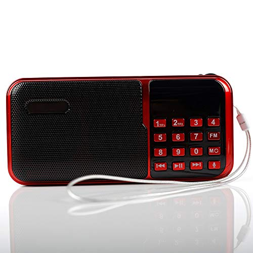AVEEBABY c-818 Portable Mini FM Radio Speaker Music Player TF Card USB for PC iPod Phone with LED Display Outdoor Dancing mp3 ()