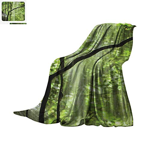 Rainforest Throw Blanket Jungle View with Waterfall Rocks and Trees Natural Beauty in Wild Atmosphere Warm Microfiber All Season Blanket for Bed or Couch 50